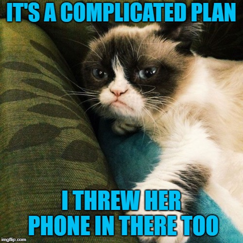 IT'S A COMPLICATED PLAN I THREW HER PHONE IN THERE TOO | made w/ Imgflip meme maker