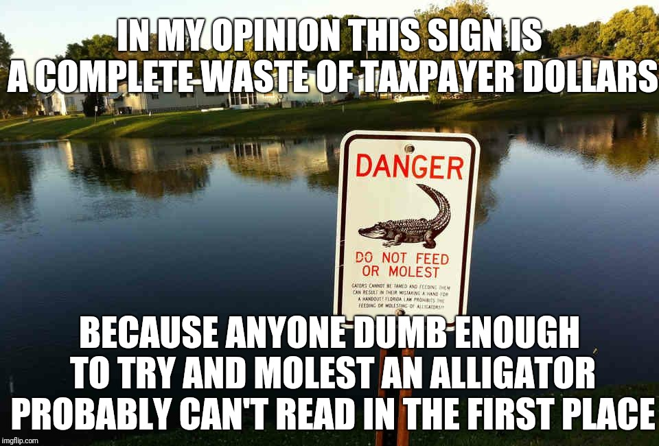 IN MY OPINION THIS SIGN IS A COMPLETE WASTE OF TAXPAYER DOLLARS BECAUSE ANYONE DUMB ENOUGH TO TRY AND MOLEST AN ALLIGATOR PROBABLY CAN'T REA | image tagged in don't molest them alligators | made w/ Imgflip meme maker