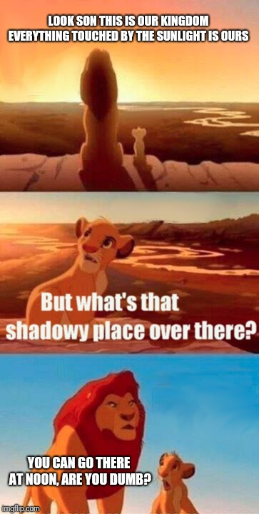 That's how this conversation should have gone. | LOOK SON THIS IS OUR KINGDOM EVERYTHING TOUCHED BY THE SUNLIGHT IS OURS YOU CAN GO THERE AT NOON, ARE YOU DUMB? | image tagged in memes,simba shadowy place | made w/ Imgflip meme maker