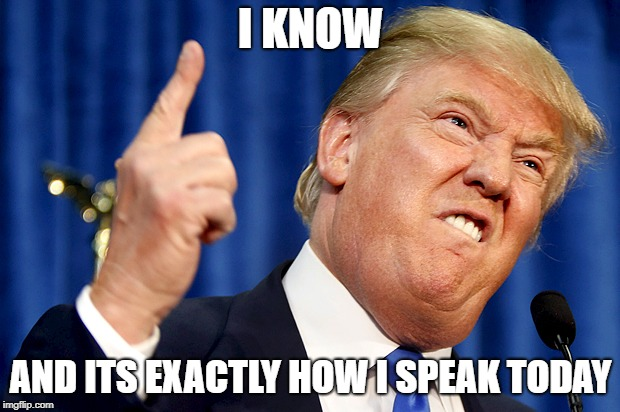 Donald Trump | I KNOW AND ITS EXACTLY HOW I SPEAK TODAY | image tagged in donald trump | made w/ Imgflip meme maker