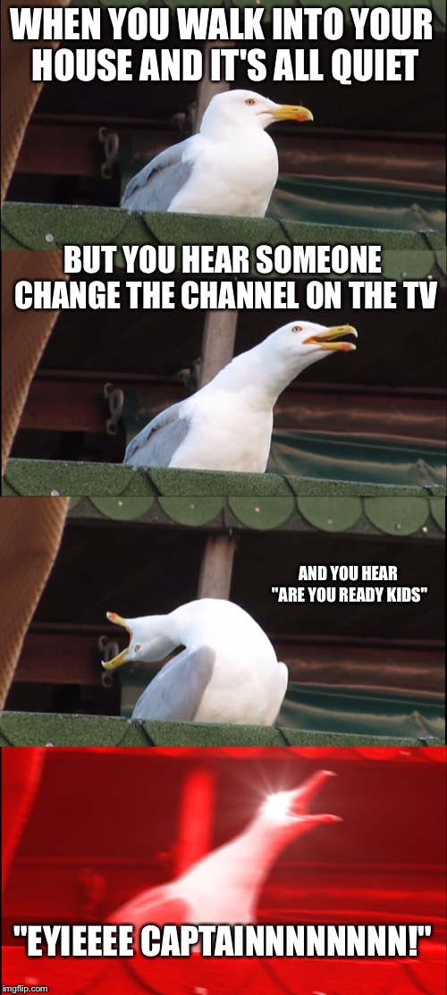"Inhaling Seagull Meme | WHEN YOU WALK INTO YOUR HOUSE AND IT'S ALL QUIET BUT YOU HEAR SOMEONE CHANGE THE CHANNEL ON THE TV AND YOU HEAR ""ARE YOU READY KIDS"" ""EYIEEE 