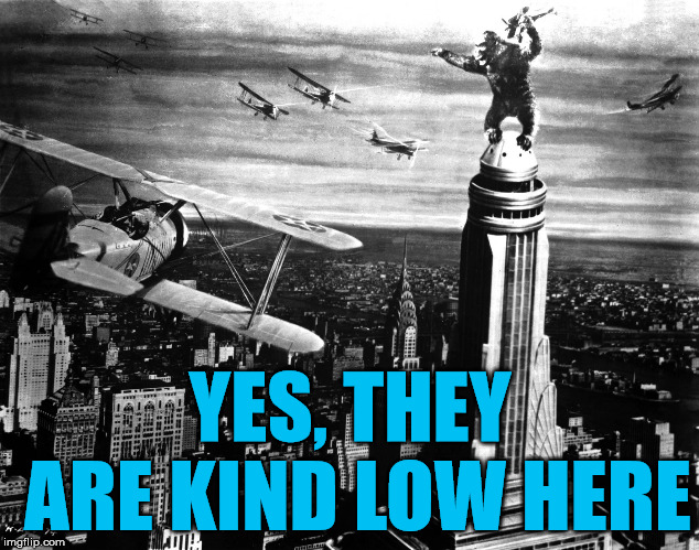 king kong | YES, THEY ARE KIND LOW HERE | image tagged in king kong | made w/ Imgflip meme maker