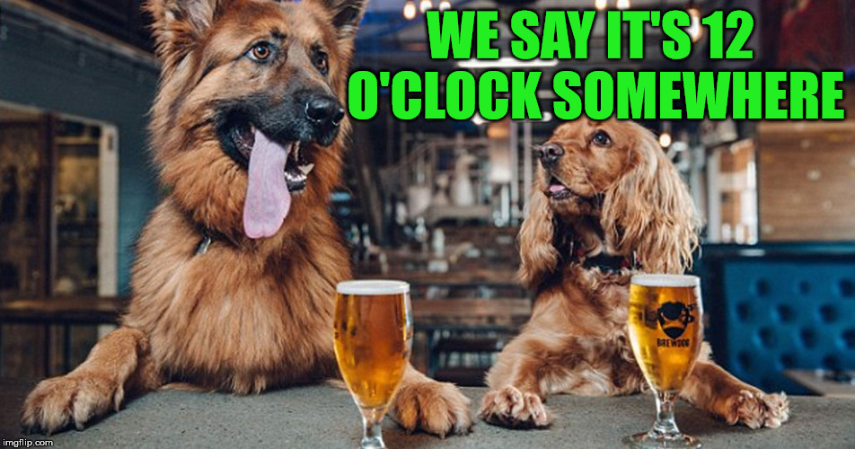 dog drinking | WE SAY IT'S 12 O'CLOCK SOMEWHERE | image tagged in dog drinking | made w/ Imgflip meme maker
