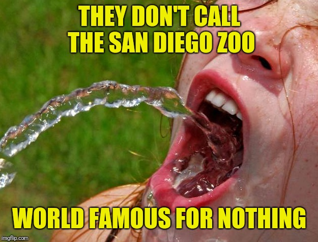 THEY DON'T CALL THE SAN DIEGO ZOO WORLD FAMOUS FOR NOTHING | made w/ Imgflip meme maker