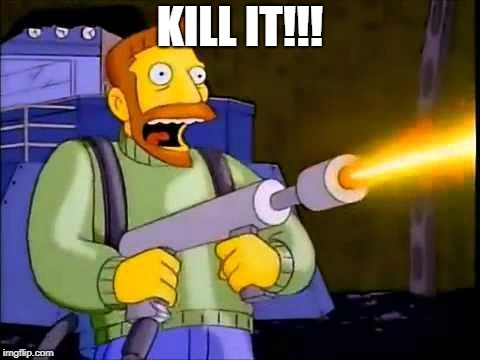 Kill it with fire | KILL IT!!! | image tagged in kill it with fire | made w/ Imgflip meme maker