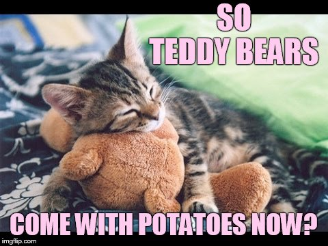 SO TEDDY BEARS COME WITH POTATOES NOW? | made w/ Imgflip meme maker