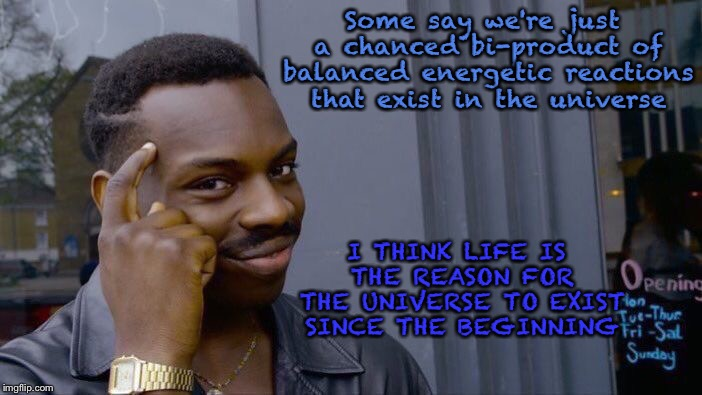 Roll Safe Think About It Meme | Some say we're just a chanced bi-product of balanced energetic reactions that exist in the universe I THINK LIFE IS THE REASON FOR THE UNIVE | image tagged in memes,roll safe think about it | made w/ Imgflip meme maker