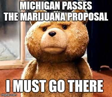 TED Meme | MICHIGAN PASSES THE MARIJUANA PROPOSAL I MUST GO THERE | image tagged in memes,ted | made w/ Imgflip meme maker