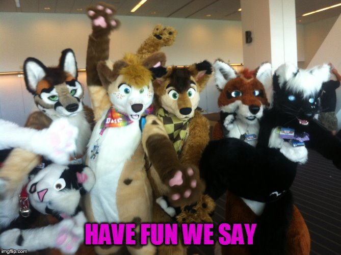 Furries | HAVE FUN WE SAY | image tagged in furries | made w/ Imgflip meme maker