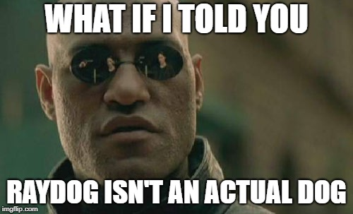 Matrix Morpheus Meme | WHAT IF I TOLD YOU RAYDOG ISN'T AN ACTUAL DOG | image tagged in memes,matrix morpheus,imgflip,raydog,dogs | made w/ Imgflip meme maker