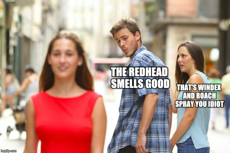Distracted Boyfriend Meme | THE REDHEAD SMELLS GOOD THAT'S WINDEX AND ROACH SPRAY YOU IDIOT | image tagged in memes,distracted boyfriend | made w/ Imgflip meme maker