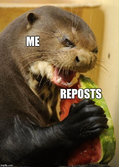 Self Loathing Otter | ME REPOSTS | image tagged in memes,self loathing otter | made w/ Imgflip meme maker