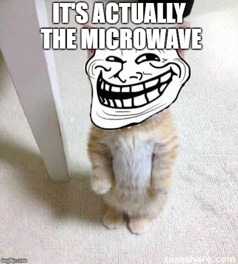 Troll Cat | IT'S ACTUALLY THE MICROWAVE | image tagged in troll cat | made w/ Imgflip meme maker