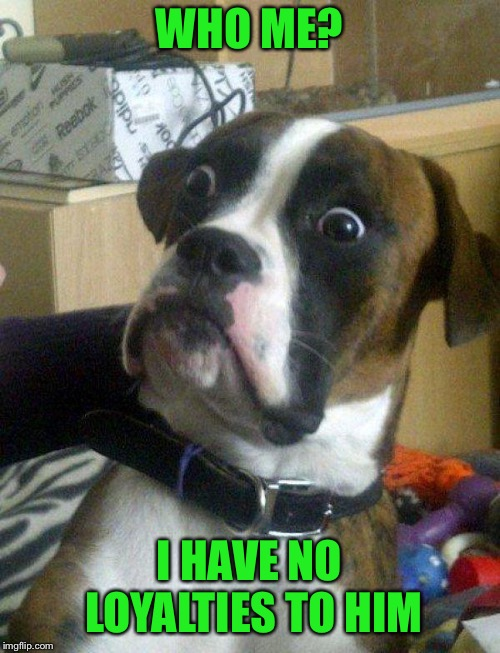 Blankie the Shocked Dog | WHO ME? I HAVE NO LOYALTIES TO HIM | image tagged in blankie the shocked dog | made w/ Imgflip meme maker