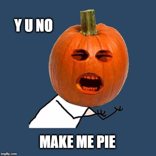 Y U NOvember (A socrates and punman21 event)---Pumpkin Pie | Y U NO MAKE ME PIE | image tagged in y u no,y u november,pumpkin,pumpkin spice,pie,what do we want | made w/ Imgflip meme maker