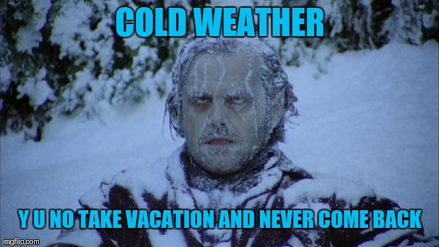 Cold | COLD WEATHER Y U NO TAKE VACATION AND NEVER COME BACK | image tagged in cold | made w/ Imgflip meme maker