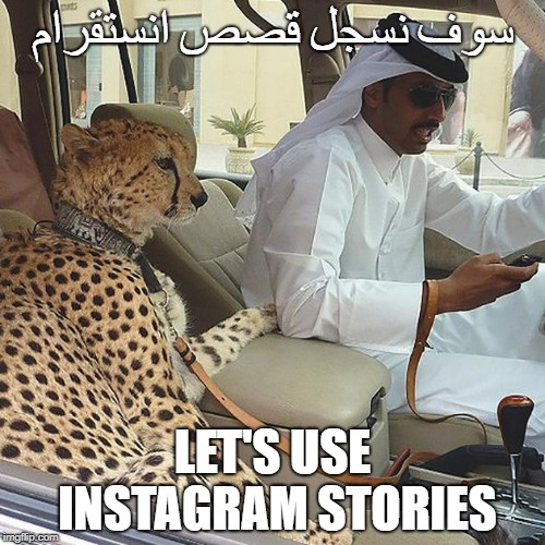 سوف نسجل قصص انستقرام LET'S USE INSTAGRAM STORIES | image tagged in arabian_pets | made w/ Imgflip meme maker