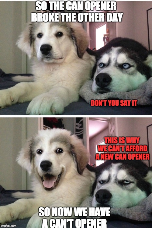 Bad pun dogs | SO THE CAN OPENER BROKE THE OTHER DAY SO NOW WE HAVE A CAN'T OPENER DON'T YOU SAY IT THIS IS WHY WE CAN'T AFFORD A NEW CAN OPENER | image tagged in bad pun dogs | made w/ Imgflip meme maker
