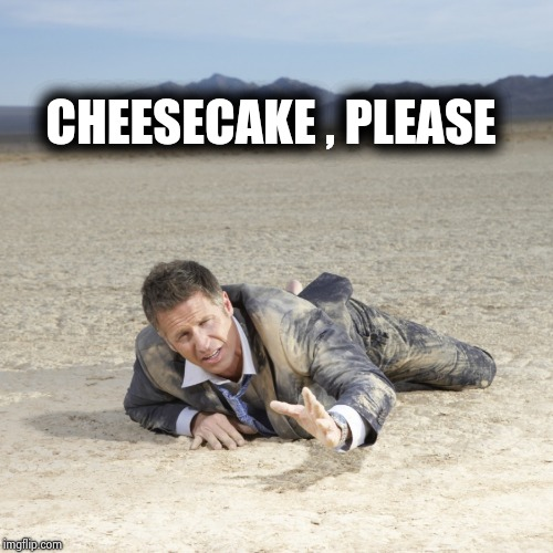 Desert Crawler | CHEESECAKE , PLEASE | image tagged in desert crawler | made w/ Imgflip meme maker