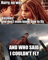 AND WHO SAID I COULDN'T FLY | image tagged in funny | made w/ Imgflip meme maker