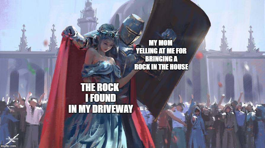 Knight Protecting Princess | MY MOM YELLING AT ME FOR BRINGING A ROCK IN THE HOUSE THE ROCK I FOUND IN MY DRIVEWAY | image tagged in knight protecting princess | made w/ Imgflip meme maker