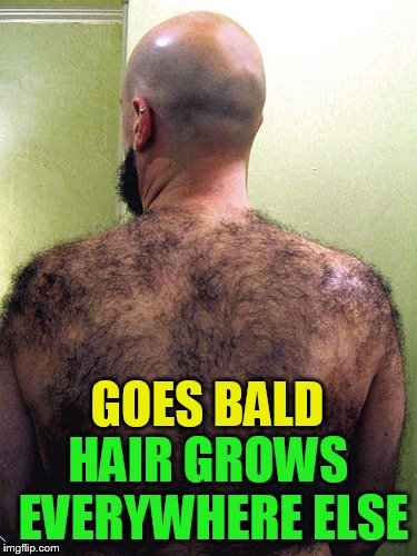 GOES BALD HAIR GROWS EVERYWHERE ELSE | made w/ Imgflip meme maker