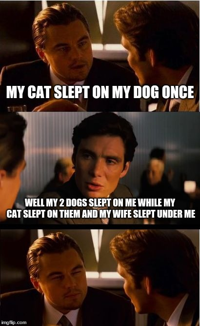Inception Meme | MY CAT SLEPT ON MY DOG ONCE WELL MY 2 DOGS SLEPT ON ME WHILE MY CAT SLEPT ON THEM AND MY WIFE SLEPT UNDER ME | image tagged in memes,inception | made w/ Imgflip meme maker