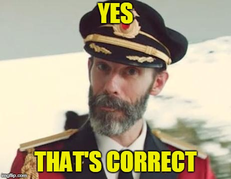 Captain Obvious | YES THAT'S CORRECT | image tagged in captain obvious | made w/ Imgflip meme maker