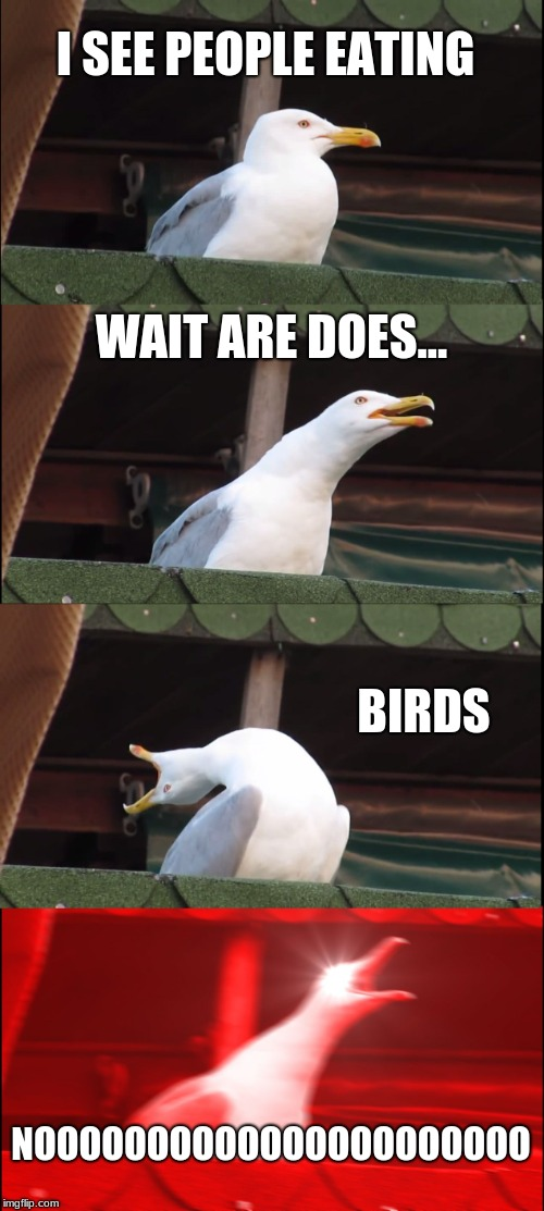 Inhaling Seagull Meme | I SEE PEOPLE EATING WAIT ARE DOES... BIRDS NOOOOOOOOOOOOOOOOOOOOOO | image tagged in memes,inhaling seagull | made w/ Imgflip meme maker