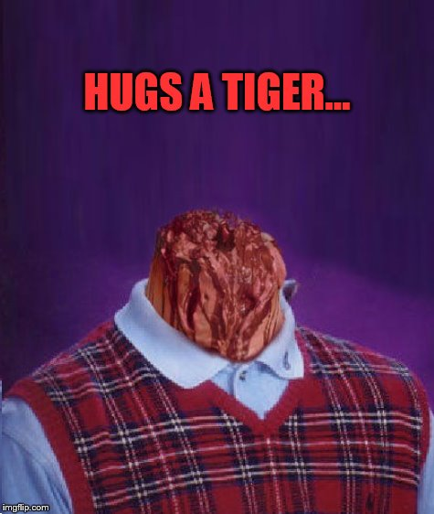 HUGS A TIGER... | made w/ Imgflip meme maker