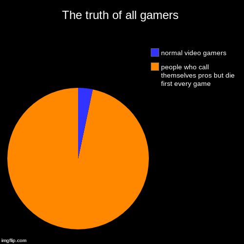 The truth of all gamers | The truth of all gamers | people who call themselves pros but die first every game, normal video gamers | image tagged in funny,pie charts,cant lie,the truth is near,error welp,meh | made w/ Imgflip chart maker