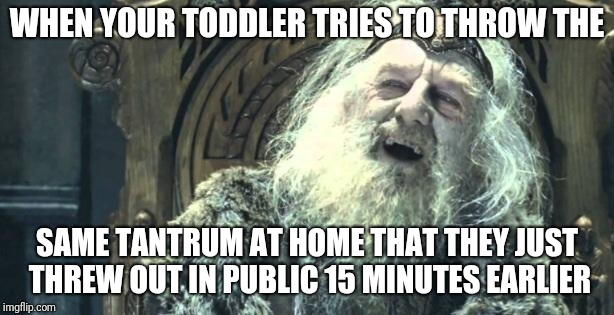 You have no power here | WHEN YOUR TODDLER TRIES TO THROW THE SAME TANTRUM AT HOME THAT THEY JUST THREW OUT IN PUBLIC 15 MINUTES EARLIER | image tagged in you have no power here | made w/ Imgflip meme maker