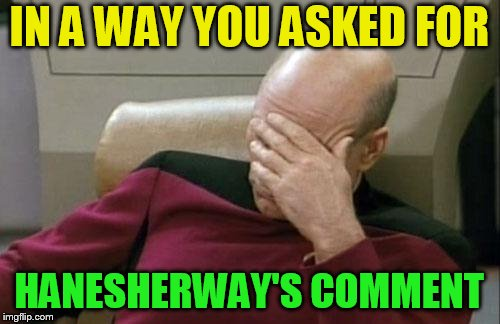 Captain Picard Facepalm Meme | IN A WAY YOU ASKED FOR HANESHERWAY'S COMMENT | image tagged in memes,captain picard facepalm | made w/ Imgflip meme maker