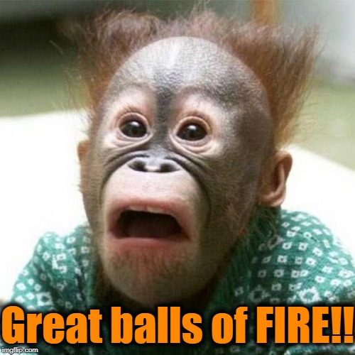 Shocked Monkey | Great balls of FIRE!! | image tagged in shocked monkey | made w/ Imgflip meme maker