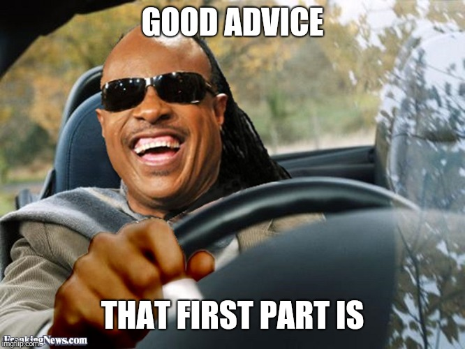 Stevie Wonder Driving | GOOD ADVICE THAT FIRST PART IS | image tagged in stevie wonder driving | made w/ Imgflip meme maker