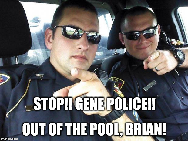 Cops | STOP!! GENE POLICE!! OUT OF THE POOL, BRIAN! | image tagged in cops | made w/ Imgflip meme maker