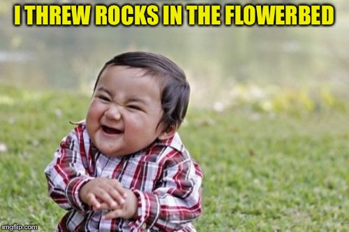 Evil Toddler Meme | I THREW ROCKS IN THE FLOWERBED | image tagged in memes,evil toddler | made w/ Imgflip meme maker