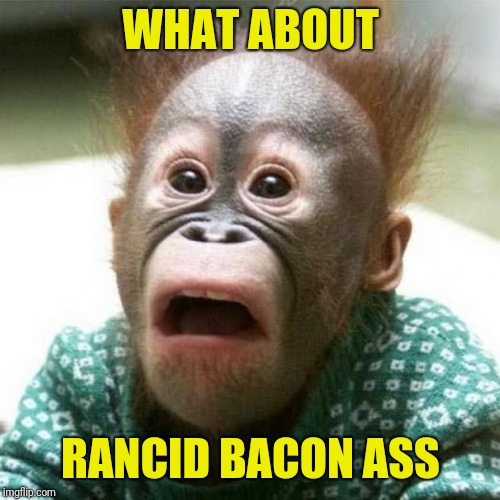 Shocked Monkey | WHAT ABOUT RANCID BACON ASS | image tagged in shocked monkey | made w/ Imgflip meme maker