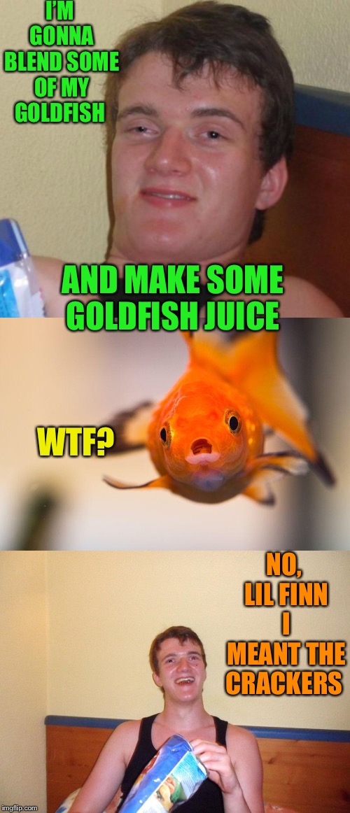 10 guy likes orange juices! | I'M GONNA BLEND SOME OF MY GOLDFISH AND MAKE SOME GOLDFISH JUICE WTF? NO, LIL FINN I MEANT THE CRACKERS | image tagged in 10 guy,cravenmoordik,goldfish,memes | made w/ Imgflip meme maker