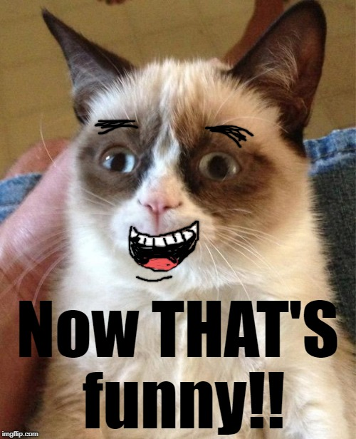 Grumpy Cat Smiling | Now THAT'S funny!! | image tagged in grumpy cat smiling | made w/ Imgflip meme maker