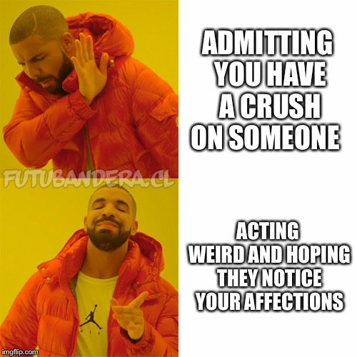 DRAKE | ADMITTING YOU HAVE A CRUSH ON SOMEONE ACTING WEIRD AND HOPING THEY NOTICE YOUR AFFECTIONS | image tagged in drake | made w/ Imgflip meme maker