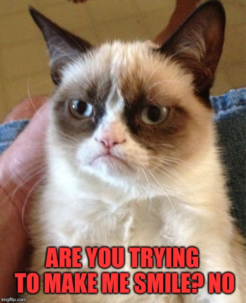 Grumpy Cat Meme | ARE YOU TRYING TO MAKE ME SMILE? NO | image tagged in memes,grumpy cat | made w/ Imgflip meme maker