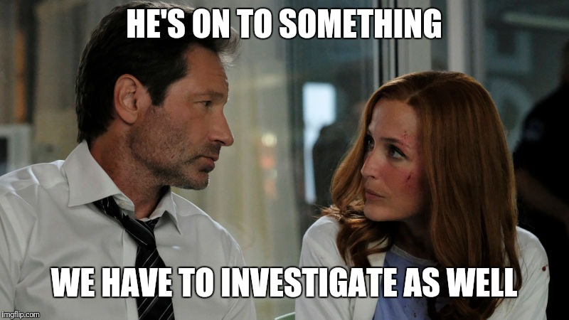 Mulder and Scully #xfiles | HE'S ON TO SOMETHING WE HAVE TO INVESTIGATE AS WELL | image tagged in mulder and scully xfiles | made w/ Imgflip meme maker