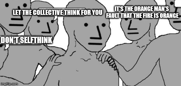 NPC Blank | DON'T SELFTHINK LET THE COLLECTIVE THINK FOR YOU IT'S THE ORANGE MAN'S FAULT THAT THE FIRE IS ORANGE | image tagged in npc blank | made w/ Imgflip meme maker