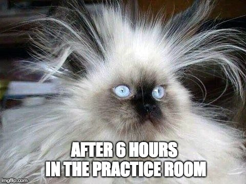 Crazy Hair Cat | AFTER 6 HOURS IN THE PRACTICE ROOM | image tagged in crazy hair cat | made w/ Imgflip meme maker