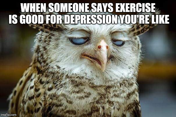 WHEN SOMEONE SAYS EXERCISE IS GOOD FOR DEPRESSION YOU'RE LIKE | image tagged in exasperated gm owl | made w/ Imgflip meme maker