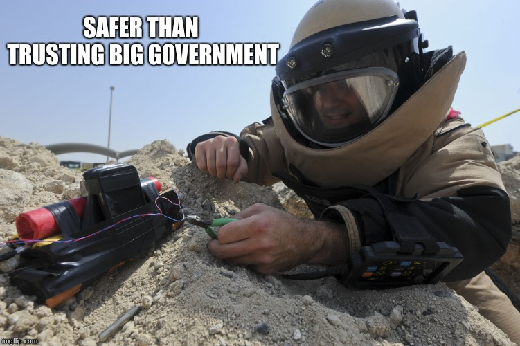 Never trust big government | SAFER THAN TRUSTING BIG GOVERNMENT | image tagged in risky risky,big government | made w/ Imgflip meme maker
