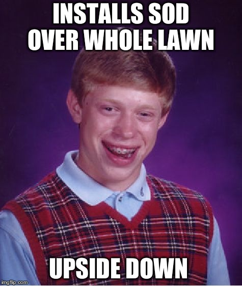 Bad Luck Brian Meme | INSTALLS SOD OVER WHOLE LAWN UPSIDE DOWN | image tagged in memes,bad luck brian | made w/ Imgflip meme maker