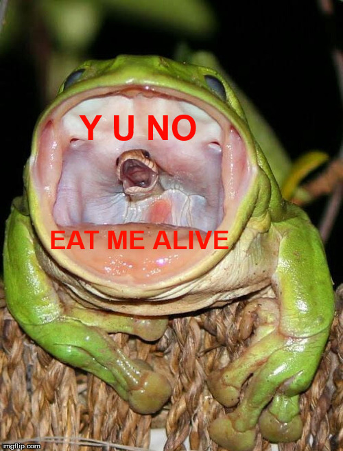 Y U NO EAT ME ALIVE | made w/ Imgflip meme maker