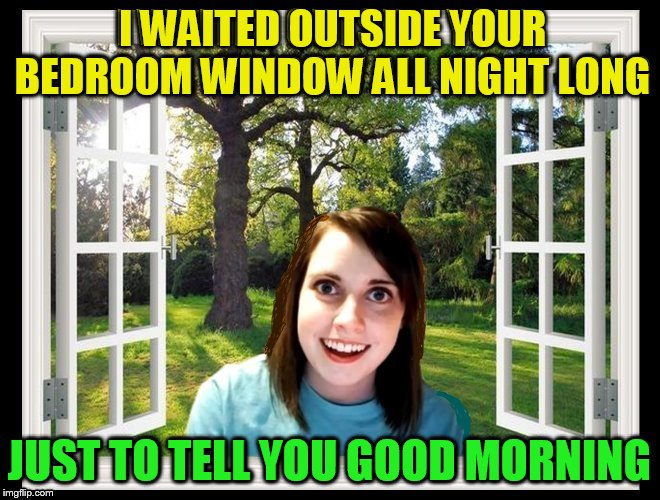 If one thing, she's dedicated! |  I WAITED OUTSIDE YOUR BEDROOM WINDOW ALL NIGHT LONG; JUST TO TELL YOU GOOD MORNING | image tagged in memes,overly attached girlfriend,window,crazy girlfriend,stalker,giveuahint | made w/ Imgflip meme maker